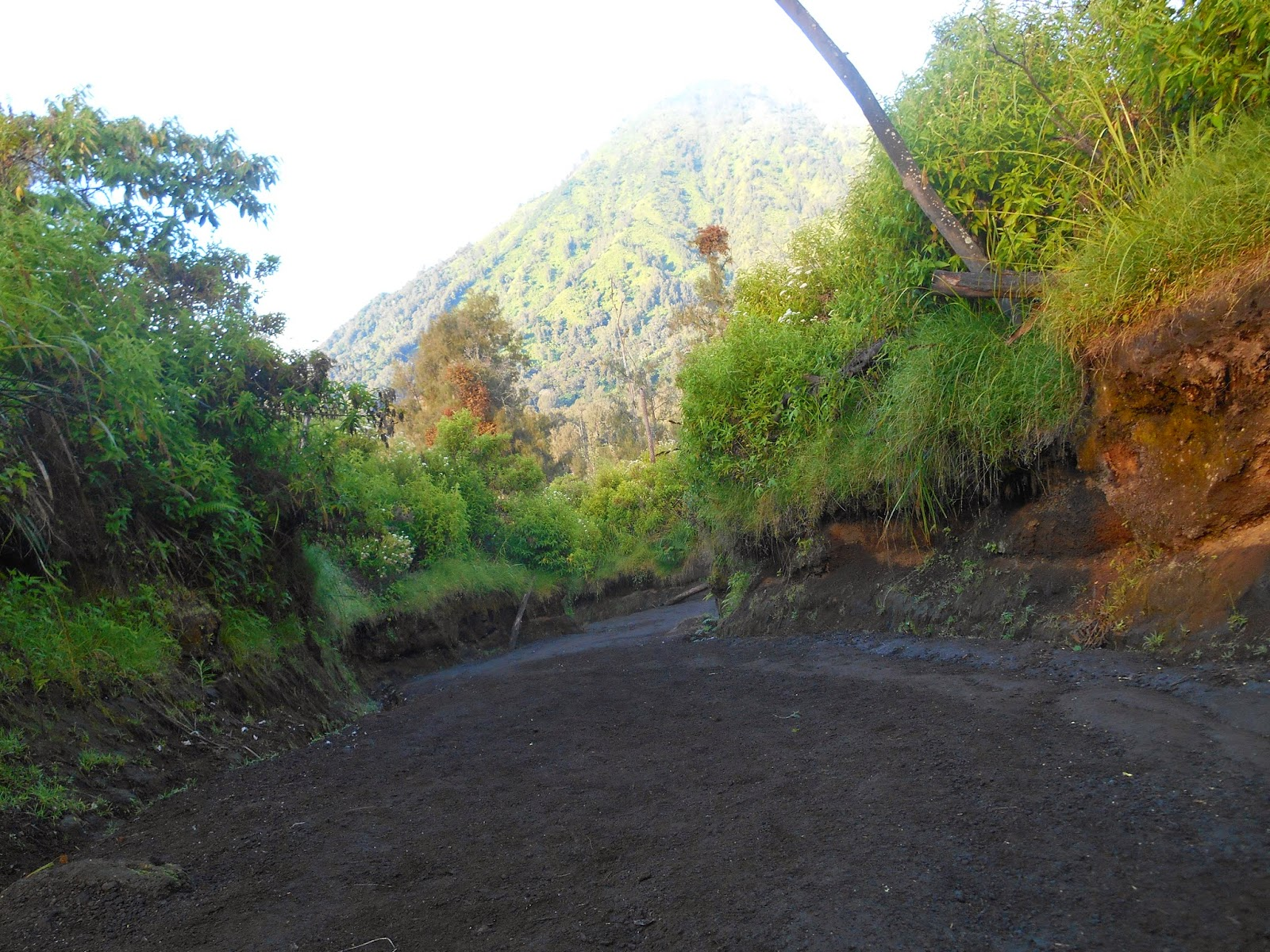 ijen hiking trails