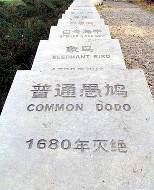 Cimitero degli animali estinti