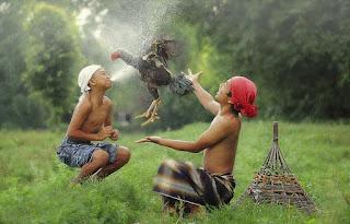 Contoh Kearifan Lokal Suku Jawa Dan Lingkungan Hidup