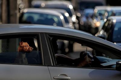 Παράταση για την ασφάλιση οχημάτων – Επιστρέφονται πρόστιμα