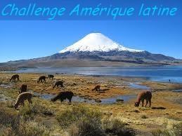 challengeAmeriqueLatine