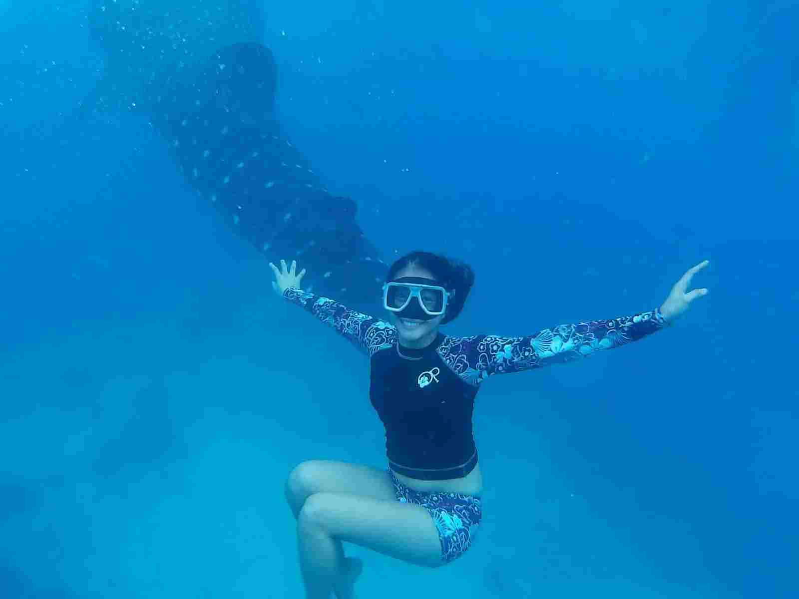 Best dive spots in Oslob Cebu Island Philippines 2018 and famous diving spots for shark,dolphin,whales,hammer head shark,riding a boat