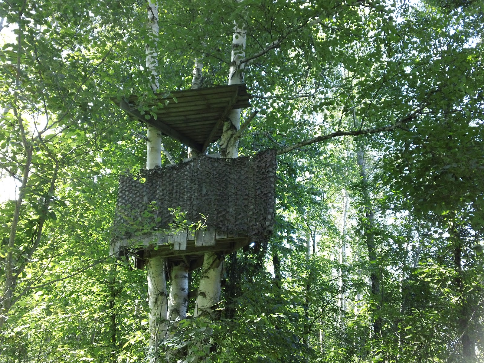 Twining Property Hunting Blinds