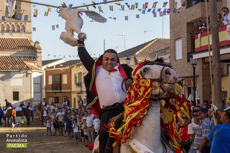 Homem decapita ganso em festa espanhola