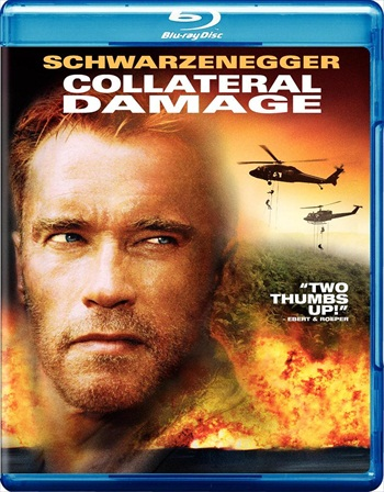 Collateral Damage 2002 Dual Audio Hindi 720p BluRay 850mb