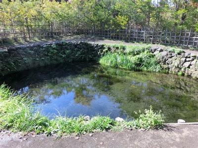 忍野八海・銚子池