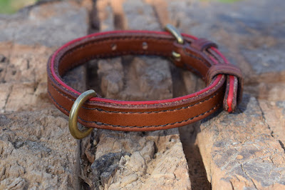 Custom leather collar with red accents and brass fittings made for a toy poodle