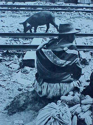 Alto el Perú – Julio Cortazar