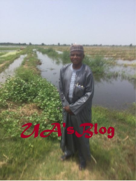 Farm Belonging To Buhari's Aide, Garba Shehu Destroyed By Flood (Photos)