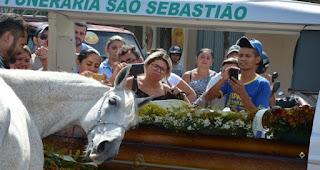 Cavalo se despede do dono morto em acidente e comove velório na PB; veja vídeo