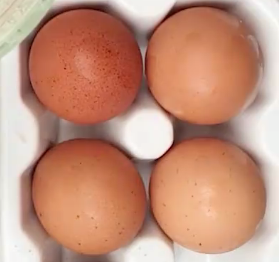 Is it safe to consume eggs? Pros and cons of eggs