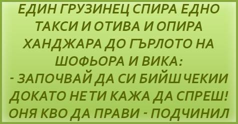 грузинец