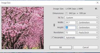Menentukan ukuran foto atau kertas