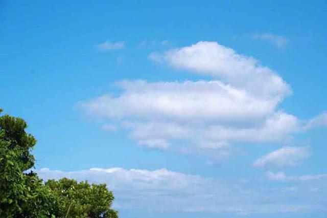 clouds, sky, trees, Okinawa, Japan