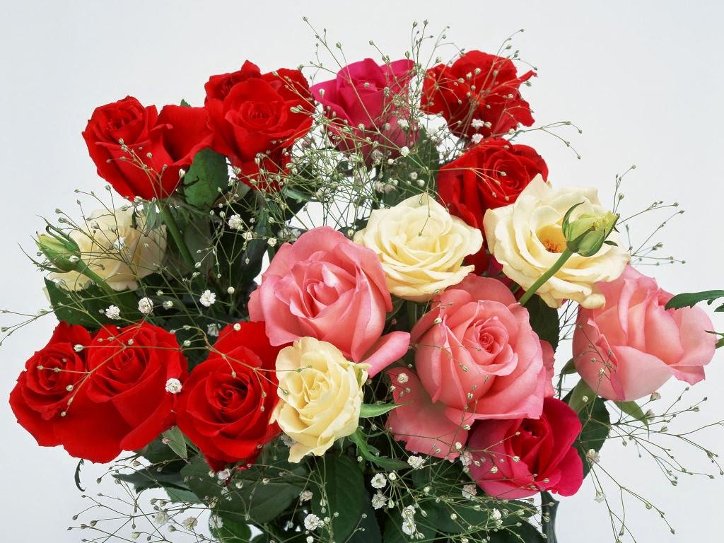 Gambar Bunga Mawar Romantis Aku Cinta Padamu HD