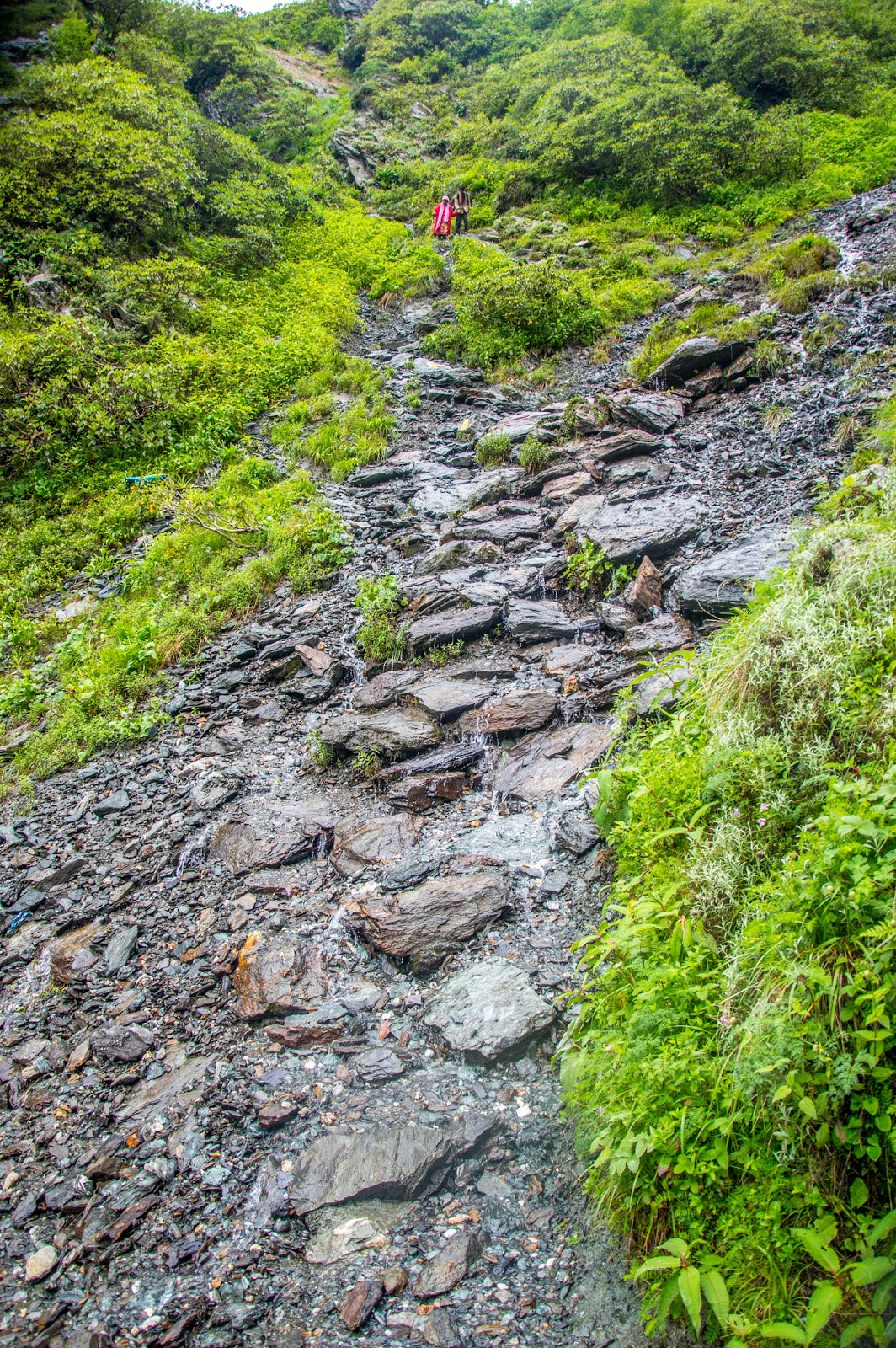 Flowing water makes the climb difficult