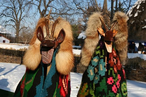 Imagini pentru caprade revelion