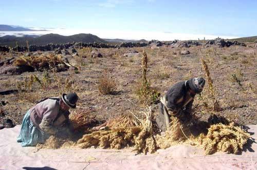 Villazón uno de los municipios más afectados por la sequía