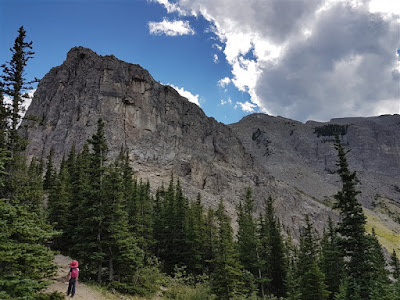 Approaching the cliff base of Yamnuska