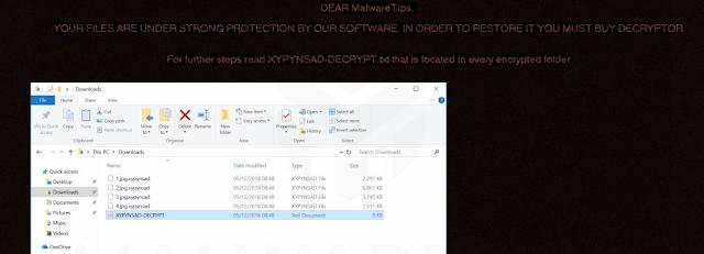 GandCrab V5.1.0 (Ransomware)