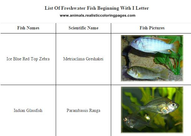 List of freshwater fish beginning with I