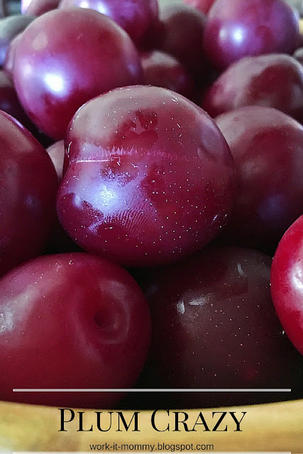 plum crazy, sharing recipes we loved using the fruit off our backyard plum tree