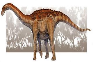 Aegyptosaurus İlginç Bilgileri