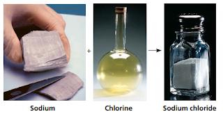 Organisme, Unsur, Atom dan Radioaktif, Natrium, clorin, NaCl,