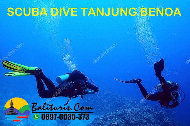 Scuba Dive Tanjung Benoa, HARGA SCUBA DIVE TANJUNG BENOA BALI