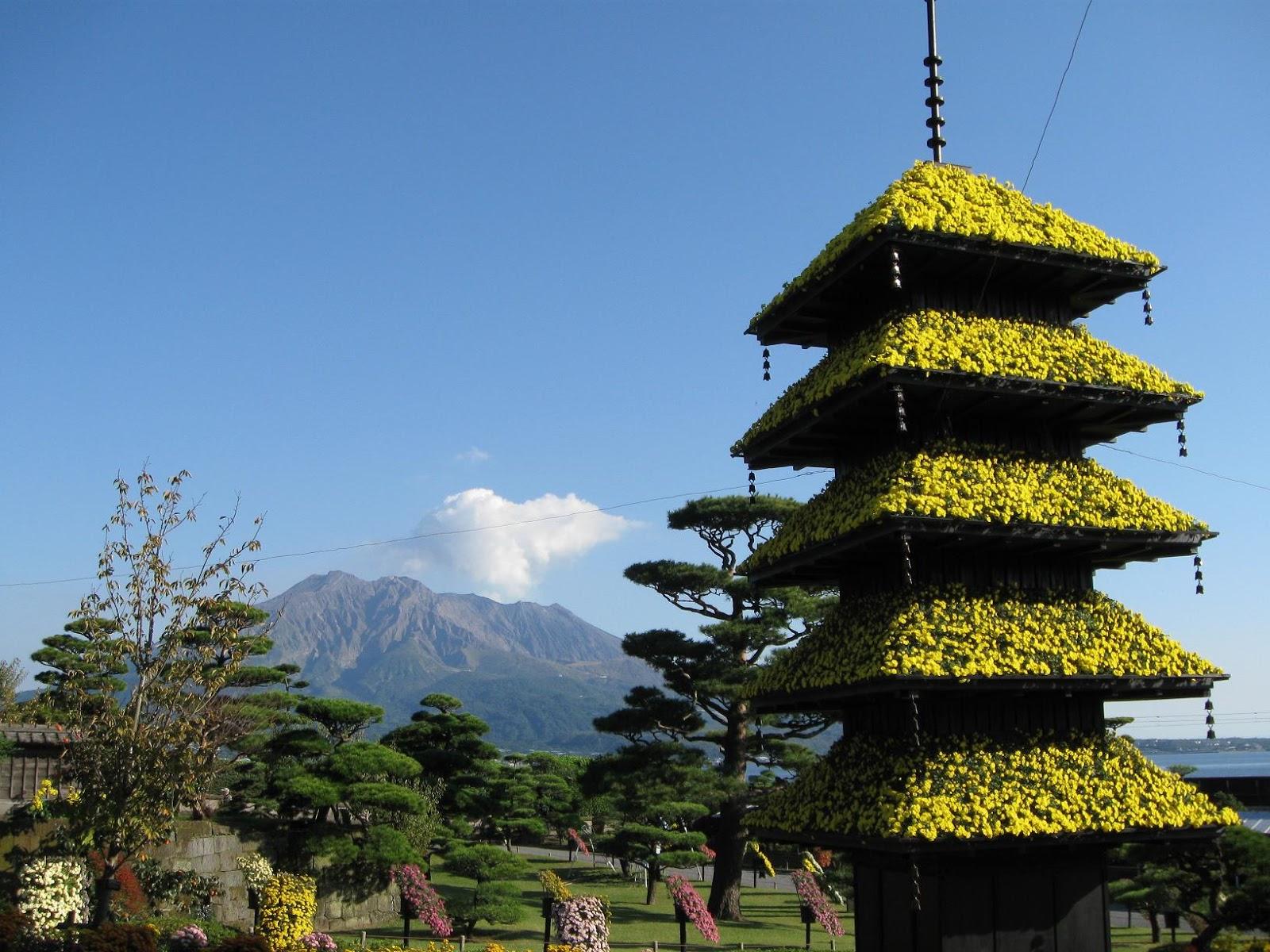 For Our Japan: 仙巖園菊花祭 / 菊まつり(鹿兒島縣鹿兒島市)