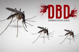 Cara Mengobati Demam Berdarah (DBD) Secara Alami, Paling Ampuh