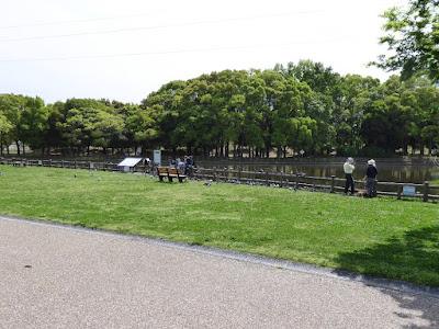 深北緑地公園 深野池