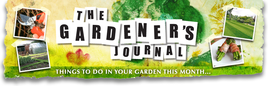The Gardener's Journal