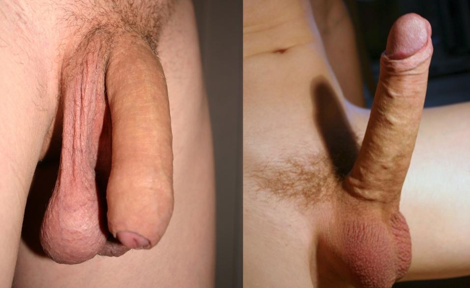 Human big dick turns!