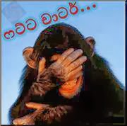 Sinhala Joke Video Facebook Fb TTh