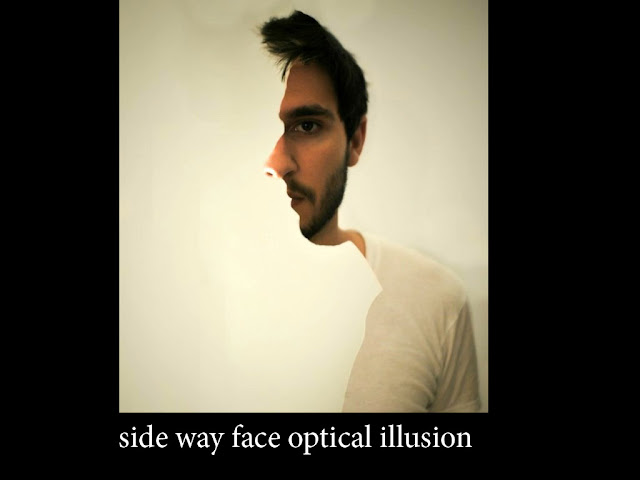face optical illusions