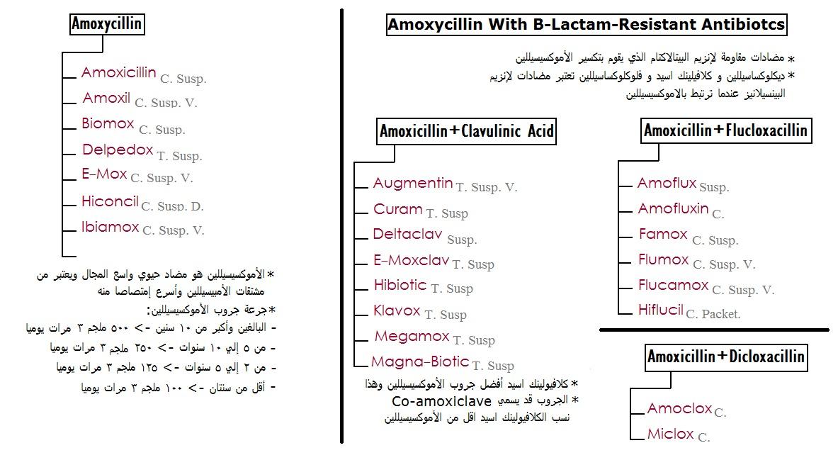 4p Course مشروع إعداد صيدلي محترف المضادات الحيوية الأموكسيسيللين Amoxycillin
