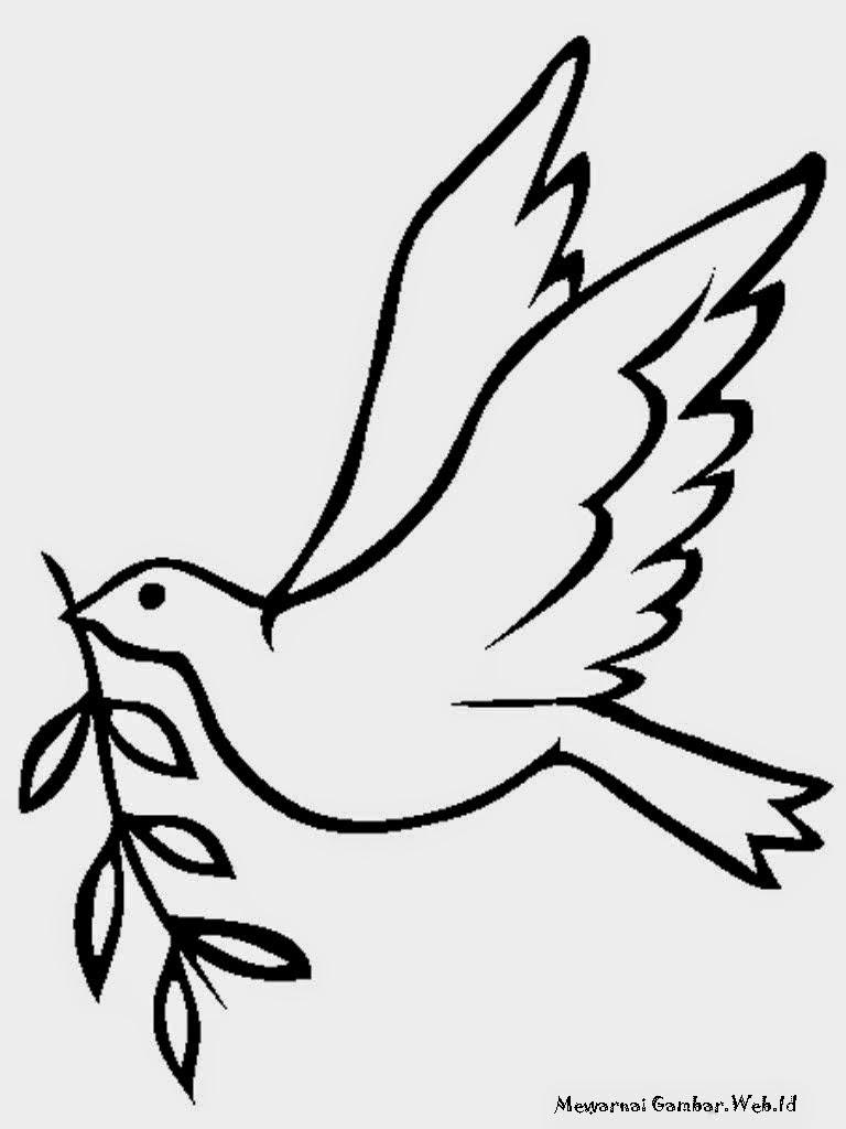 Gambar Burung Kartun Lucu