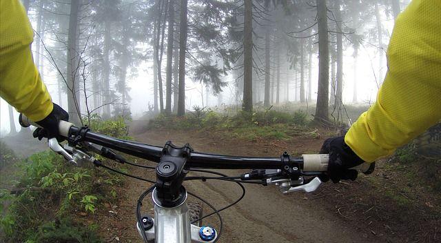 森の中を走るマウンテンバイク