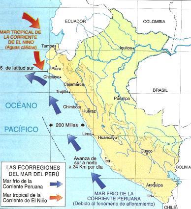 Resultado de imagen para mapa de la corriente peruana o de humboldt