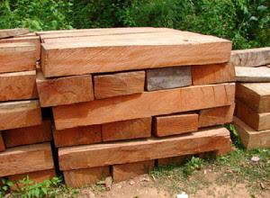 cara-menghitung-kubikasi-kayu.jpg
