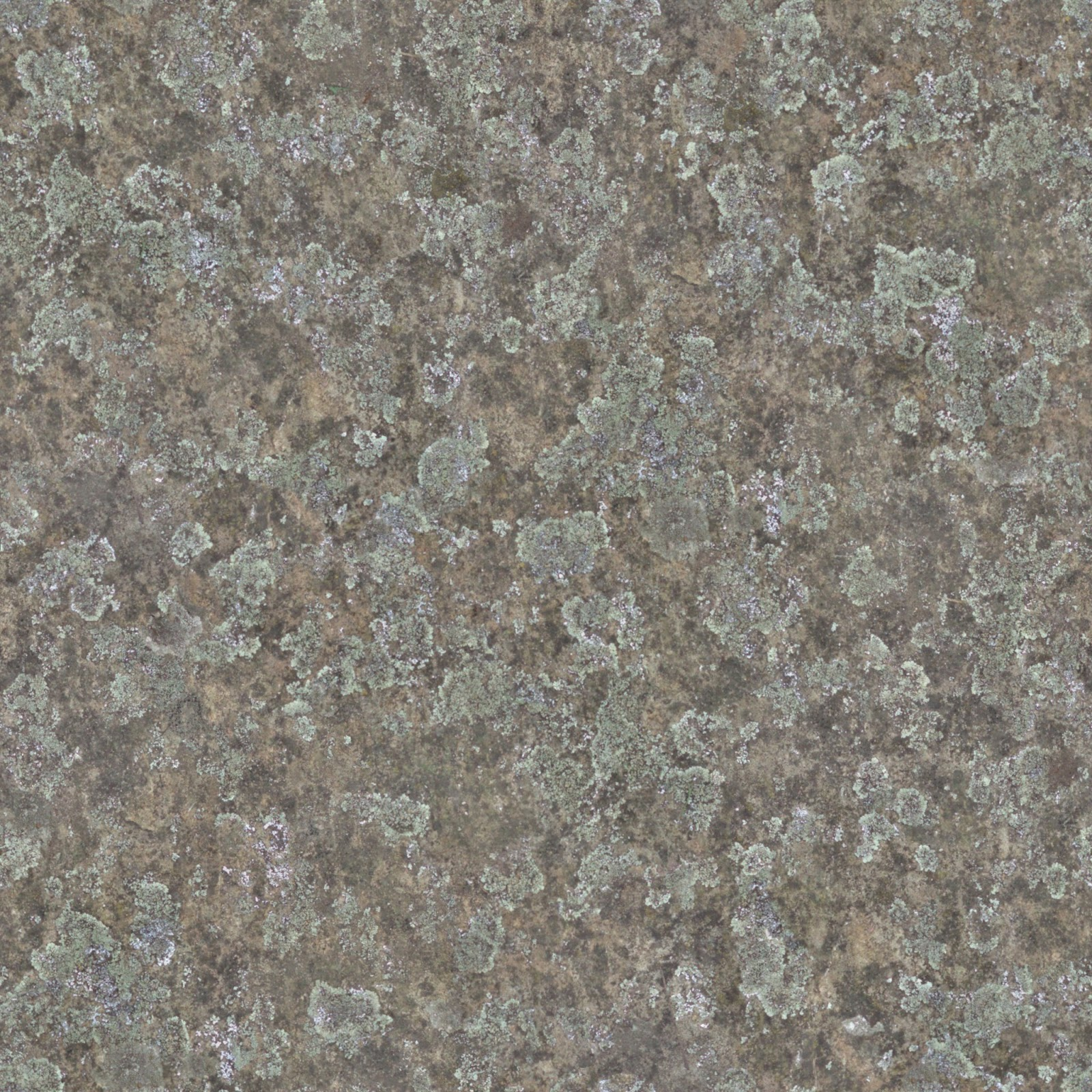 (Stone 9) Moss covered stone seamless texture 2048x2048