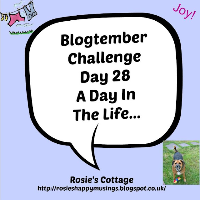 Blogtember Day 28 A Day In The Life