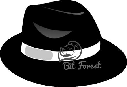A black hat hacker   cracker is somebody who shows qualities from both  white hats and grey hats. More to the point 544871e4807b