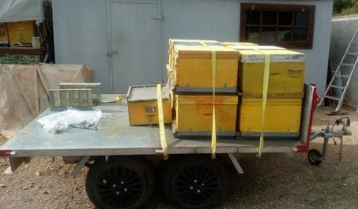 Πωλούνται μελίσσια και μελισσοκομικός εξοπλισμός στην Χαλκίδα