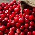 Τα cranberries είναι το φρούτο που χρειάζεσαι για την προστασία του δέρματός σου
