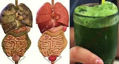Cara Menghilangkan Racun Dalam Tubuh