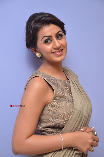 Nikki Galrani in Saree 041.JPG