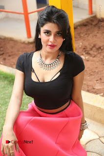 Telugu Actress Harini Stills at Dhyavudaa Movie Teaser Launch  0230.JPG