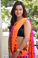 Isha Chawla Latest Hot Photo Shoot in Saree HeyAndhra